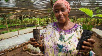 ug-making-farming-more-productive-and-profitable-for-ugandan-farmers-780x439